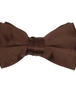 Brown Satin Bowtie