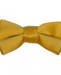 Gold Satin Bowtie